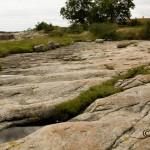 Vejakåsen, Branteviks hamn. Vågmärken i sandsten bildade av stora vågor i början av den kambriska perioden.