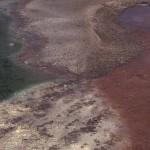 Norris Geyser Basin. .